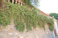 Alc.Iner. Murallas Via Romana -Florencia -Italia