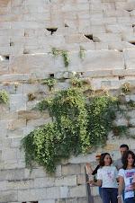 Alc.Iner. Murallas Acropolis - Atenas -Grecia