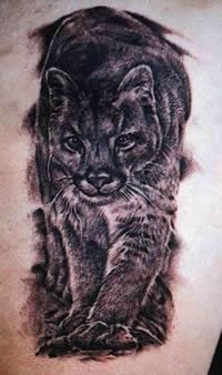 Significado Del Tatuaje De Puma Fotos Tatuajes