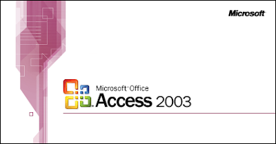 help you get your business finances in order using microsoft access