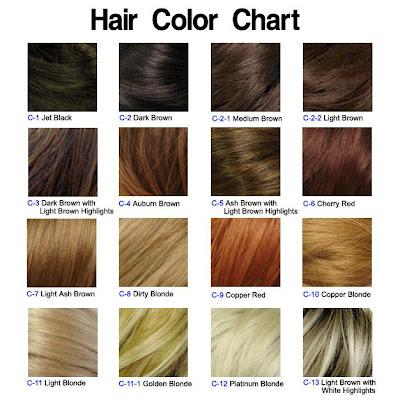 Hair Color Chart on Hair Color Chart Jpg