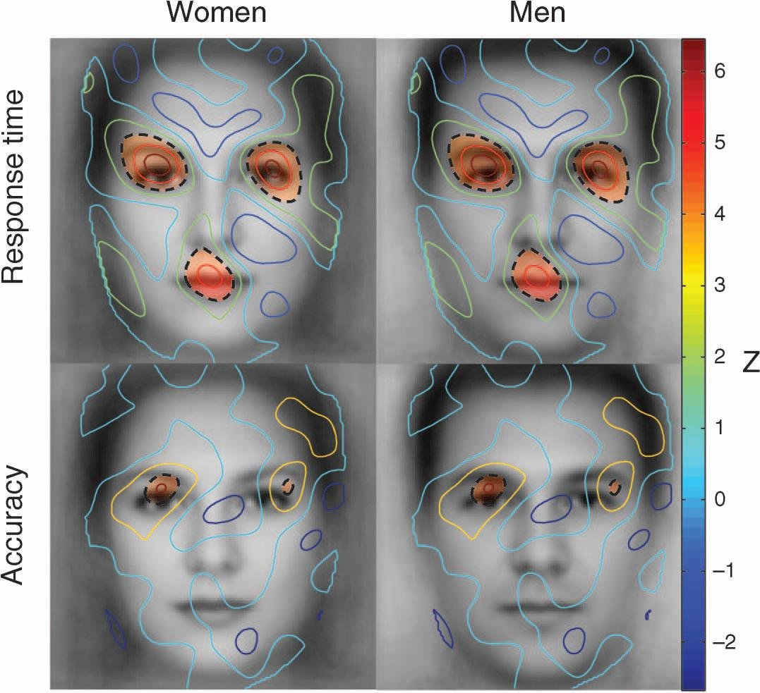 male female facial differences