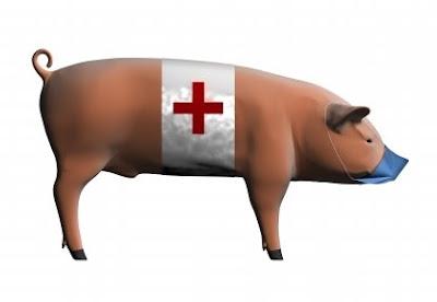 Swine Flu A H1N1 Virus Pandemic