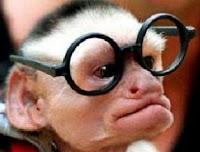 Macaco de Óculos