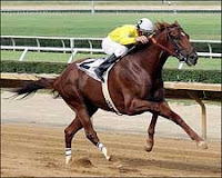 Bright One winning the WV Derby
