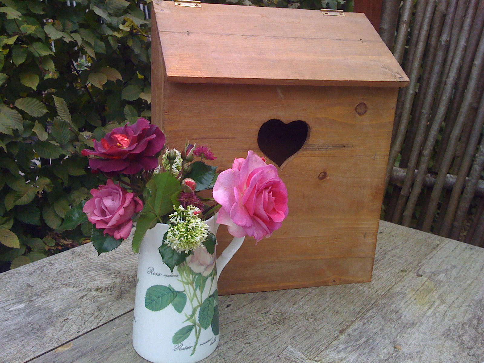 La passion des rosiers la p pini re fil roses un petit - Deplacer un rosier ...