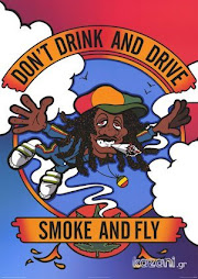 SMOKE AND FLY