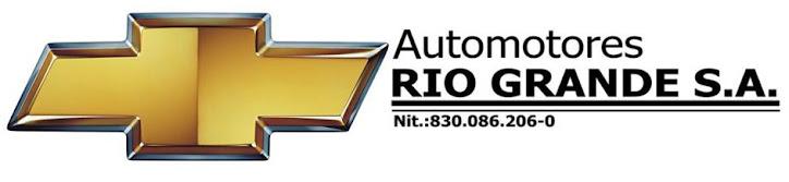 AUTOMOTORES RIO GRANDE S.A.