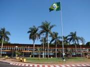 Palacio das abelhas Jataí-Go