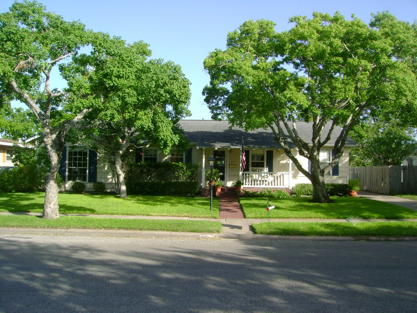 613 stirman street 78411 for Nice trees for front yard