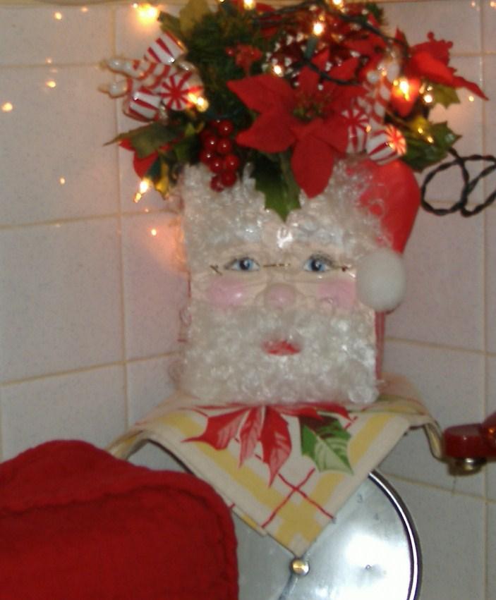 A DEBBIE-DABBLE CHRISTMAS: HOME TOUR 2010 Part Six: The