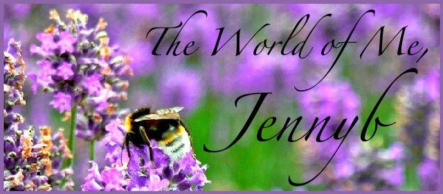 The World of Me - Jennyb