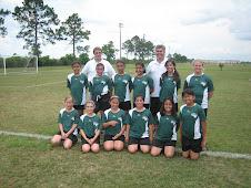 Niece Jenna's soccer team
