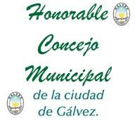 Honorable Concejo Municipal