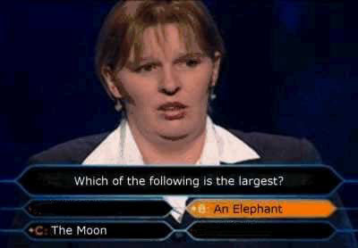 Funny Quiz Answer