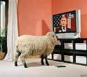 DONT BE A SHEEP ALL YOUR LIFE !!!