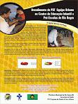 1° Joranda de Atenção Básica de Mato Grosso do Sul