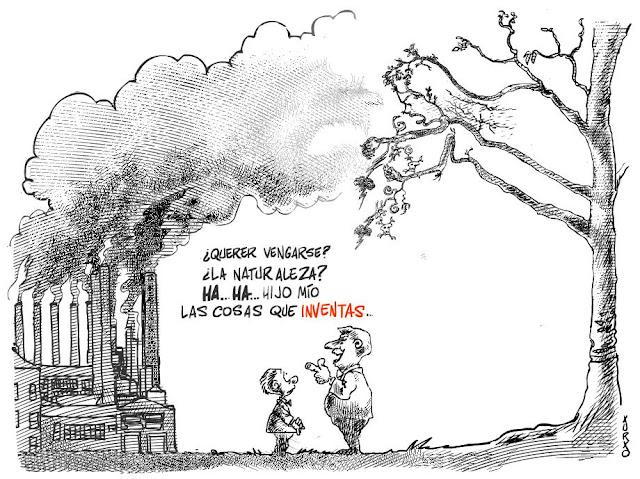 fabrica contaminando un bosque