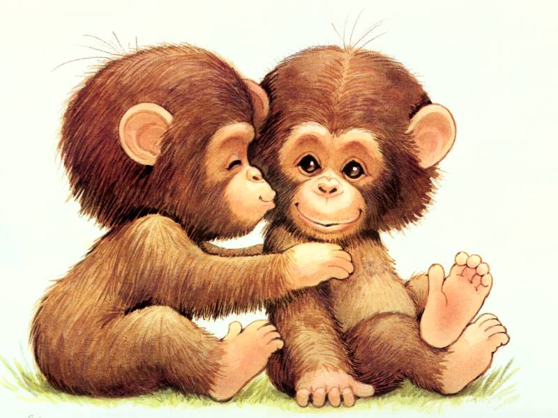 Cute baby monkey wallpapers - photo#11