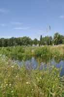 View of Sutcliff Park Nature Reserve © Environmental Agency