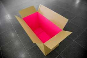 Hreinn Fridfinnsson - Er...cardboard box lined with lurid pink stuff