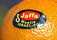 Jaffa Logo