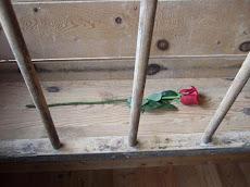 A Rose for a Sword