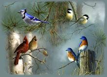 Todos los pájaros del mundo