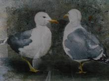 GAVIOTAS DE LUCIEN COLL