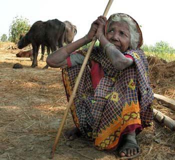 senhora dalit