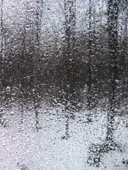 water drops, landscape through window