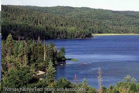 lago america: