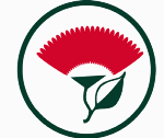 Bucklands Beach Primary School's Pohutukawa flower logo