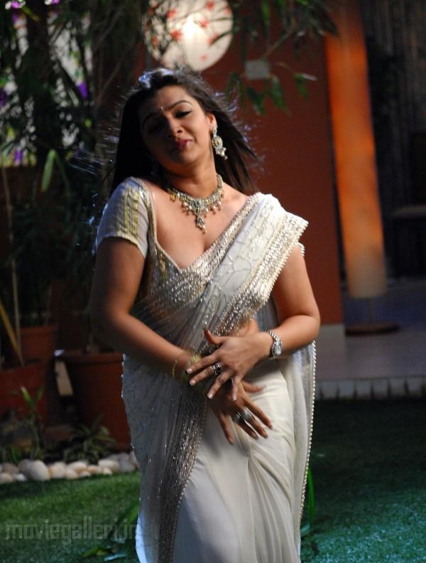 , Aarthi Agarwal Hot Pics in Saree