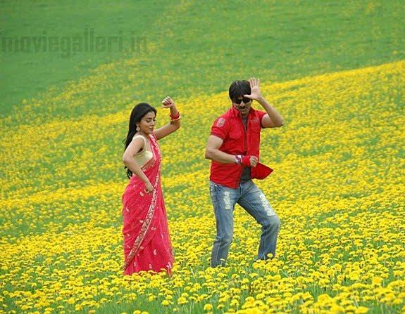 shriya in telugu movie wallpapers - Shriya Saran Gallery Telugu Actress Gallery stills images