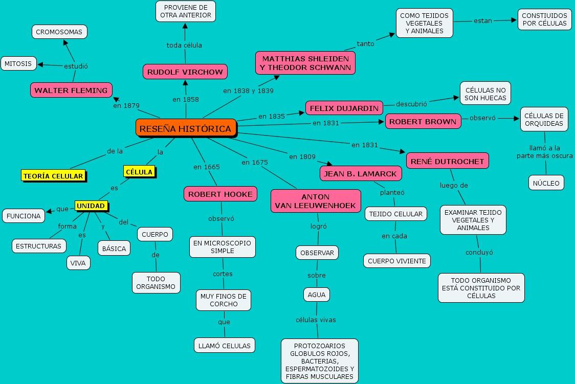 clases de esteroides y sus efectos