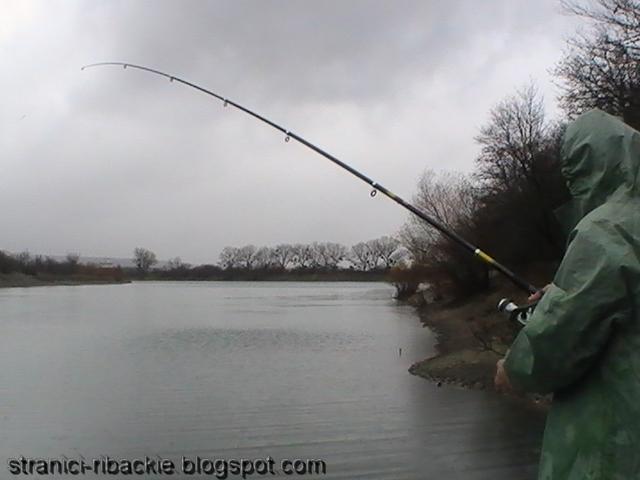 прогноз клева рыбы в кабычевке