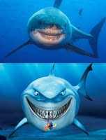 Gli squali sorridono come nel cartone di Nemo