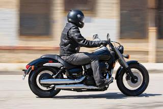 2010 Honda VT750C2A Shadow Phantom Motorcycle Cover