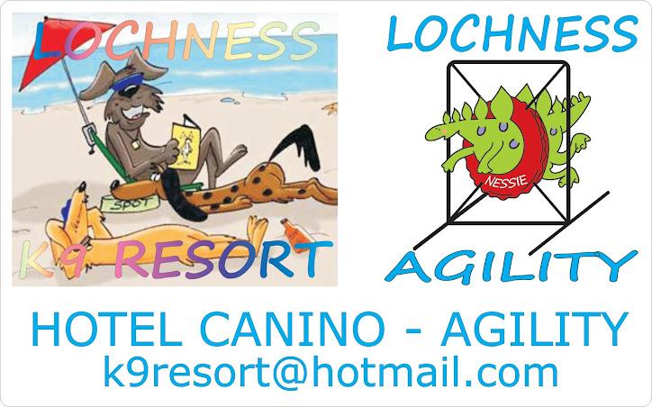 LOCHNESS AGILITY & K9 RESORT