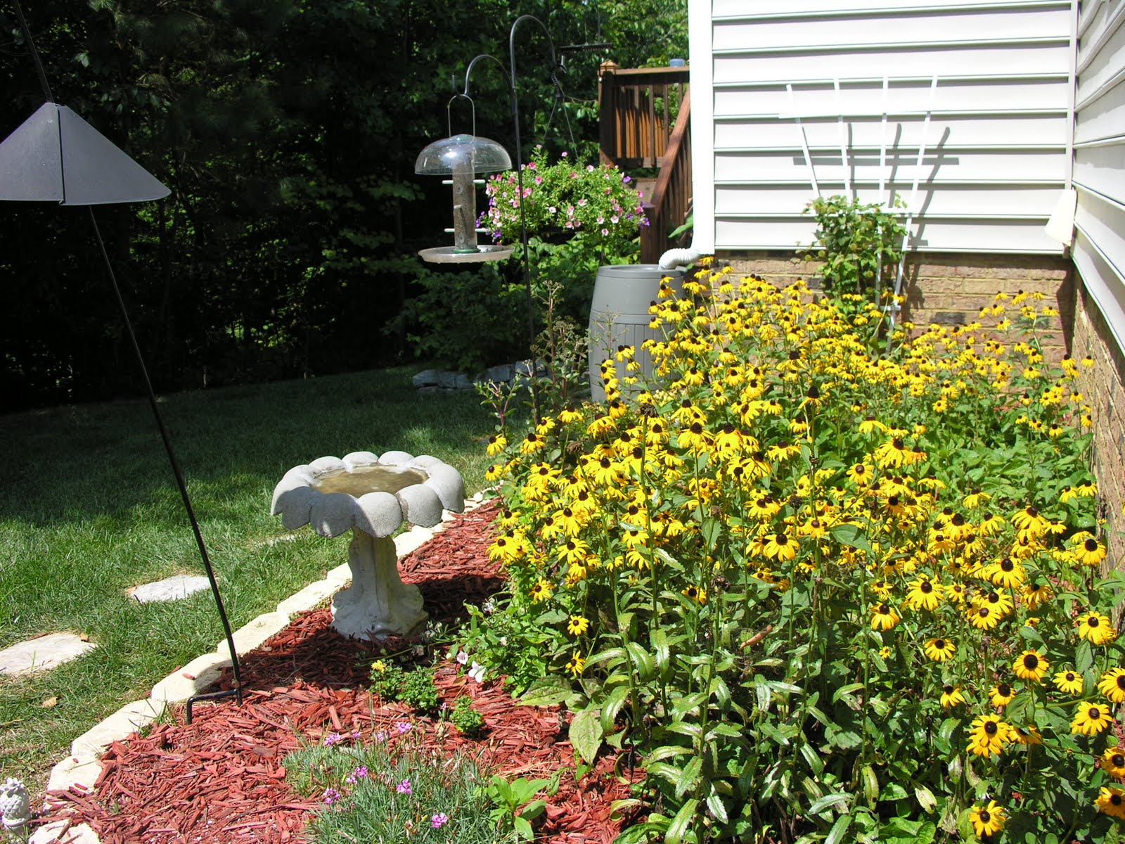 Landscaping Around The House : Caementarius corner landscaping around the house and a