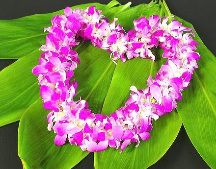 "Island Orchids..""Lei Of Love"""