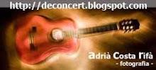 Podeu veure les meves fotos de concerts clicant sobre la imatge.