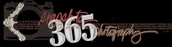 justJess | Project 365