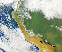 Red de Corresponsales de Emergencias del Peru