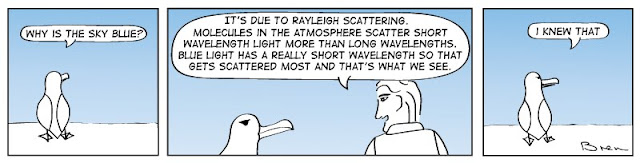 cartoon,lighthouse cartoon,gag cartoon,funny,cartoon strip,carton strip,comic strip,Humboldt,albatross,lighthouse,lighthouse keeper,sea,marine,bird,rayleigh scattering,blue sky, why is the sky blue