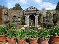 Collector Earl's Garden