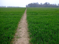 The path calls