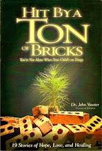 Hit By a Ton of Bricks by Dr. John Vawter
