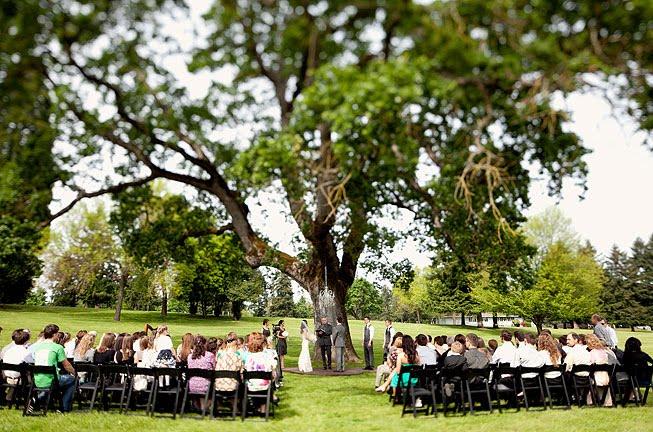 Exquisite Ba... Oak Tree Symbolism Marriage